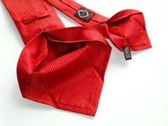 Ascot tie (2)
